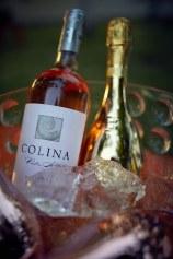 Colina Piatra Alba @ Tudor Tennis Trophy edition 20